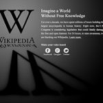 surviving wikipedia blackout